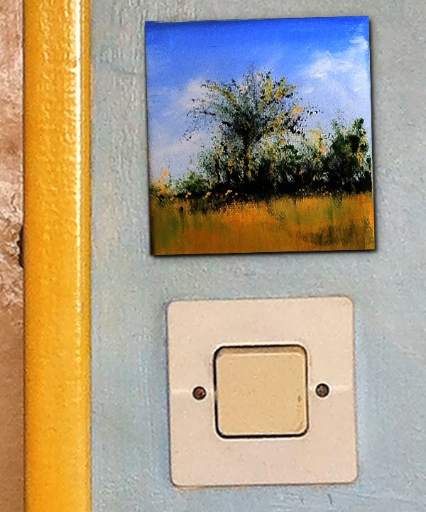 'Light Switch Landscapes' are small landscapes about the size of a standard light switch.
