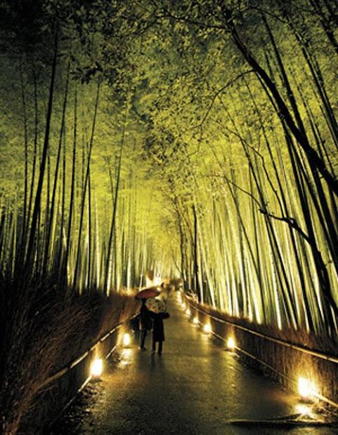 bamboo garden malaysia