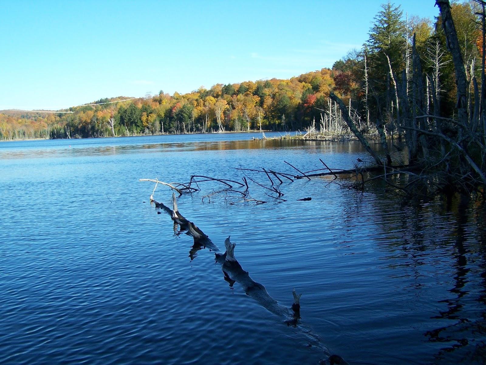 La lagune la pêche de la photo des maisonnettes