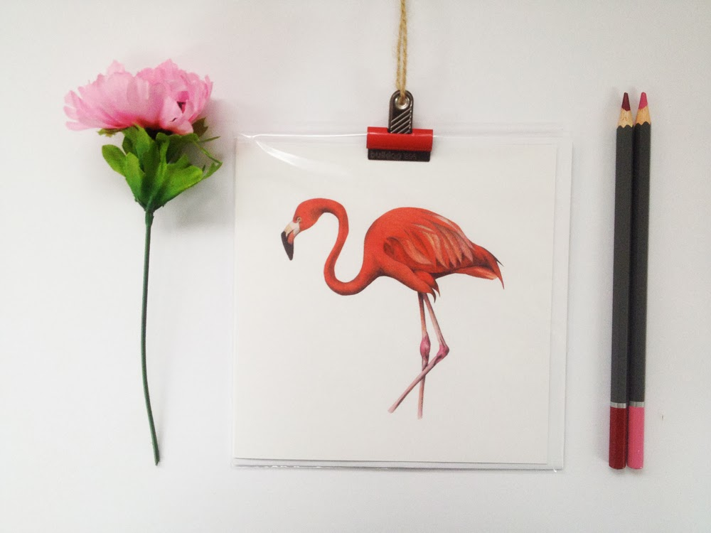 katrina sophia illustration london, animal illustrations, london based illustrators, animal greeting cards