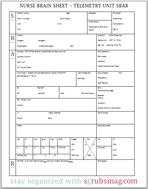 examples how to fill out organizational and mini patient plan