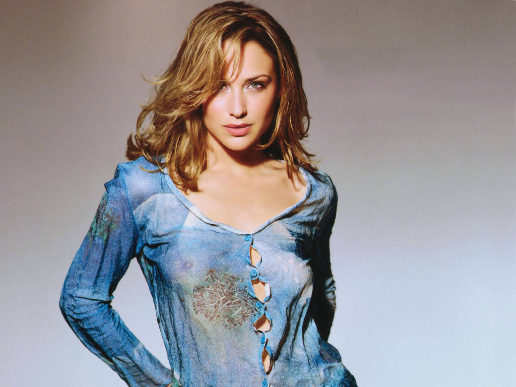 Claire Forlani Pictures Gallery 1
