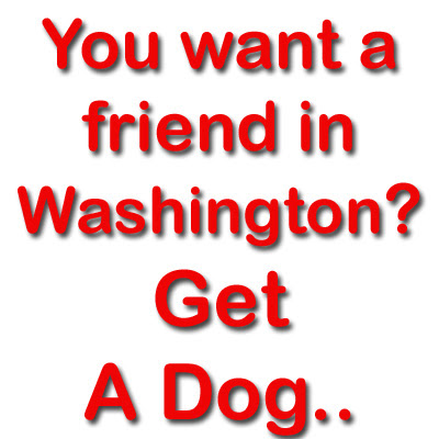 funny hilarious quotes You want a friend in Washington