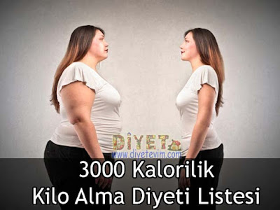 Kadınlar İçin 3000 Kalorilik Kilo Alma Diyeti 84
