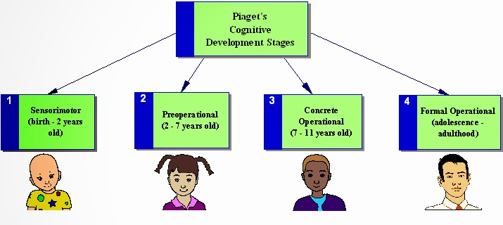 piagets early adulthood stage Jean piaget (1952 see also wadsworth,  formal operational stage (age 11+ - adolescence and adulthood) each child goes through the stages in the same order, and .