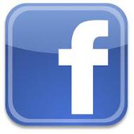 Visite facebook do site