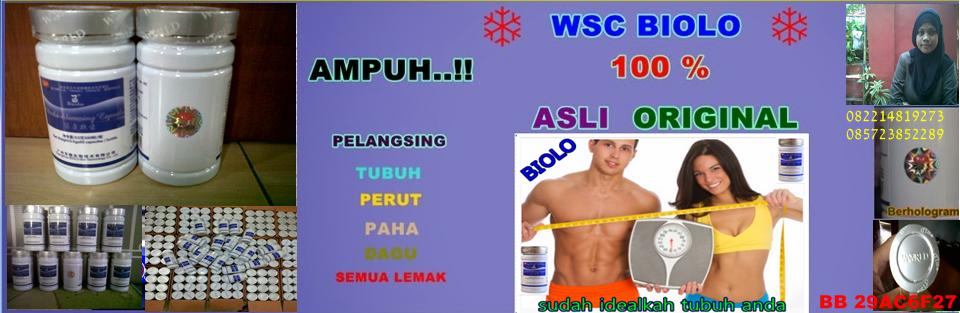 Pelangsing WSC BIOLO Asli Original import