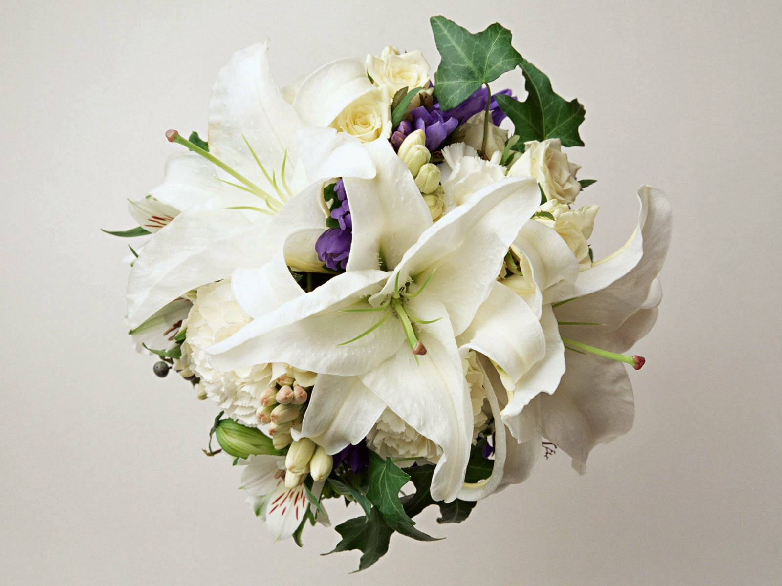 Wedding lily flowerhttprefreshrosespot lily flowers for wedding 2014 dhlflorist Choice Image
