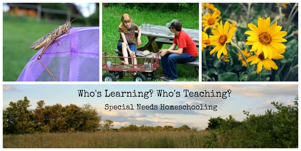 Who's learning? Who's teaching?