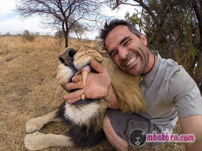 mending selfie bersama singa dari pada pacar