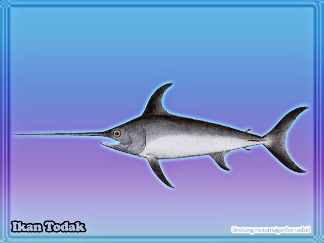 Ikan Todak