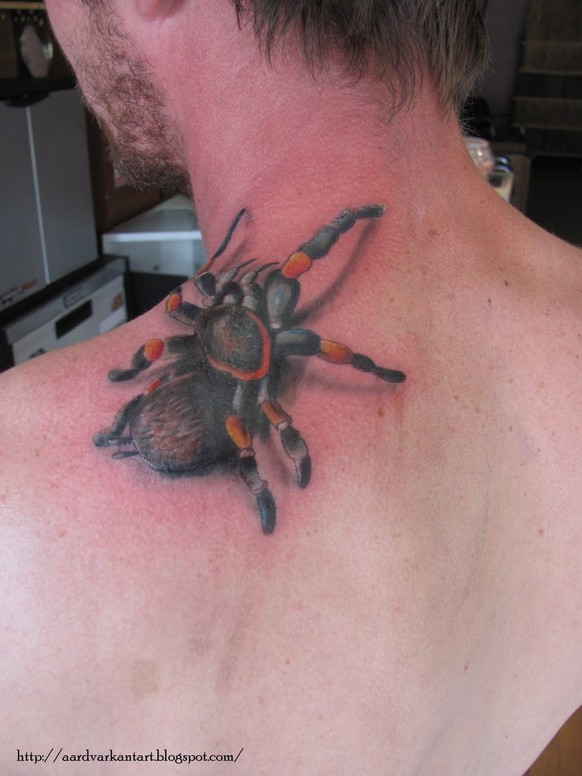 3D Spider Tattoo On Lip