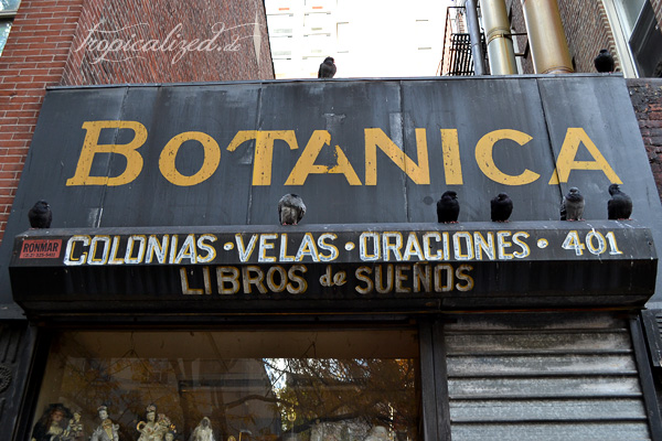 New York November 2012 Botanica