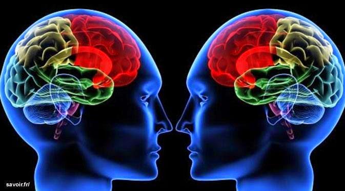 Gejala Awal Penyakit Tumor Otak Dan Pengobatannya