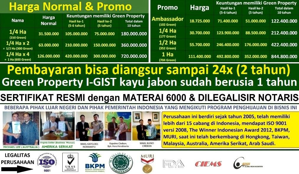 Investasi Jabon I-GIST PT.GMN | Investasi Pohon Jabon | Bisnis Investasi Terbaik Terpercaya di Dunia