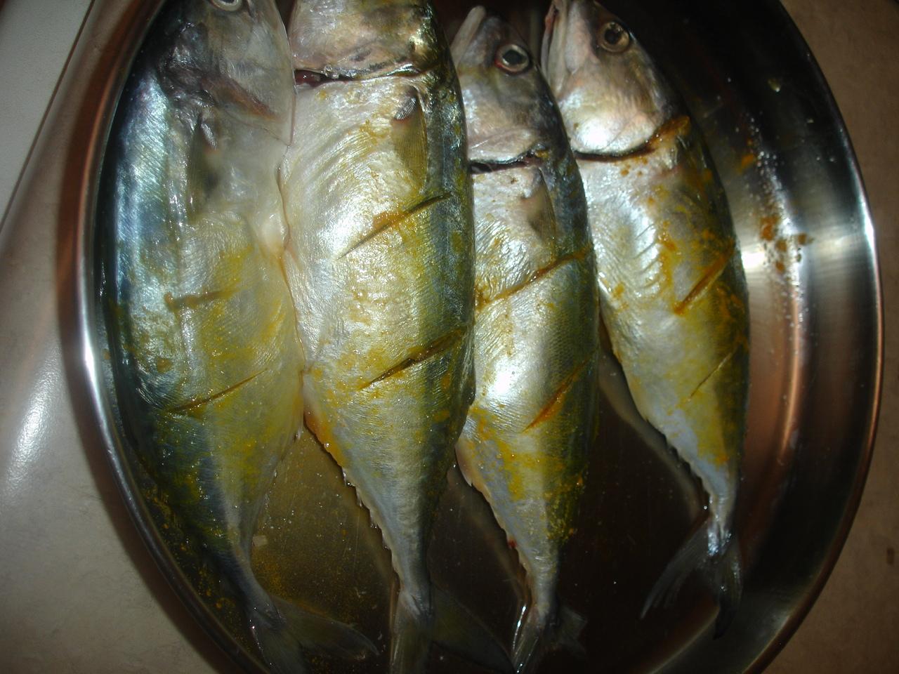 VineelaSiva: Indian Mackerel Fry