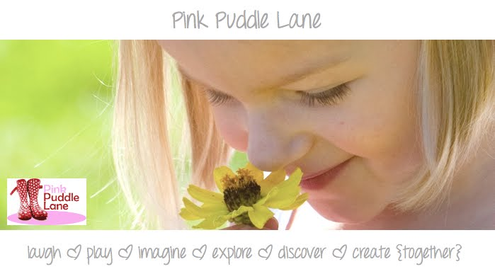 Pink Puddle Lane
