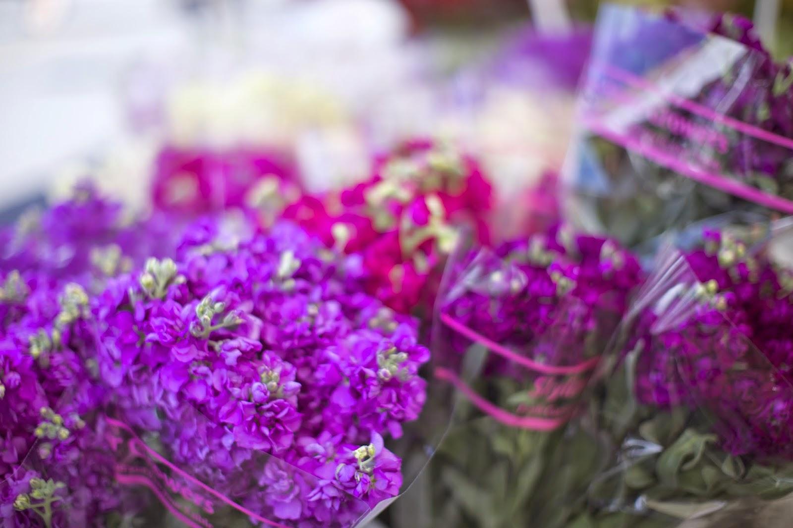 farmers market flowers u0026 homemade flower food u2013 rachel talbott