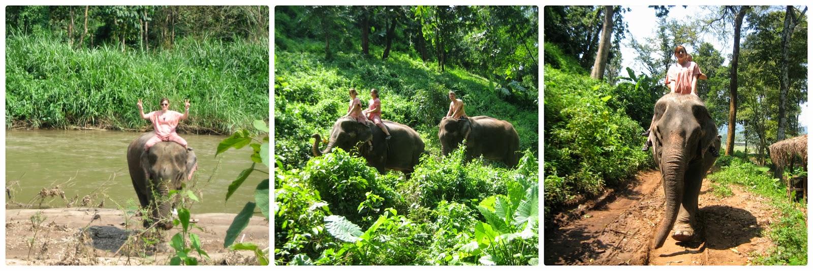 chiang-mai-jumbo-camp-elephant-trek