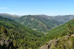 Vale da Ribeira de Leandres, Estrela