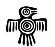 Grabado Mapuche de la Argentina Precolombina