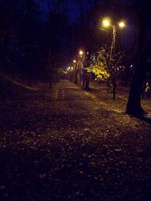 Аллея Владимирской горки ночью
