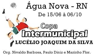 COPA INTERMUNICIPAL LUCÉLIO JOAQUIM DA SILVA