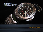 Seiko Black Knight