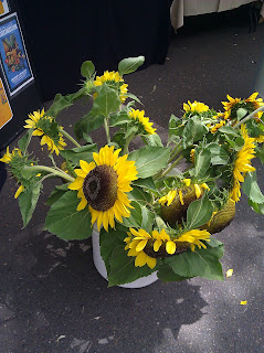 oregon sunflowers