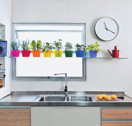 mini jardim de temperos:Rainbow Kitchen