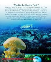 marine part of malaysia