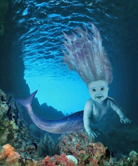 Double portion inheritance the baby mermaid dream for Fish dream meaning pregnancy