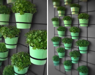 Vertikale Gärten - Dekoration mit Pflanzen in kleinen Räumen