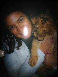 O leão bebé