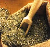 Yerba Mate tea for Cancer PRevention