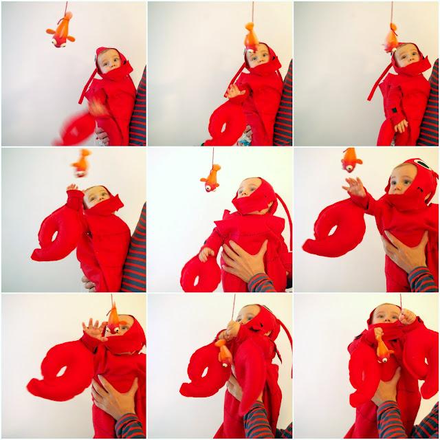 Disfraz De Cangrejo Nio Simple Disfraz De Pollito Cascarn Para Nio - Disfraz-de-cangrejo-nio