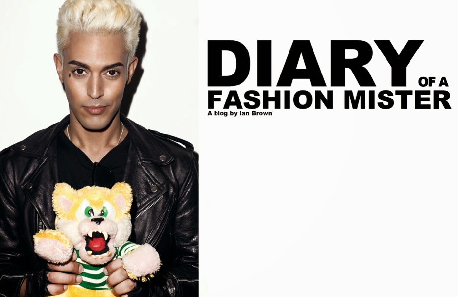 DIARY OF A FASHION MISTER