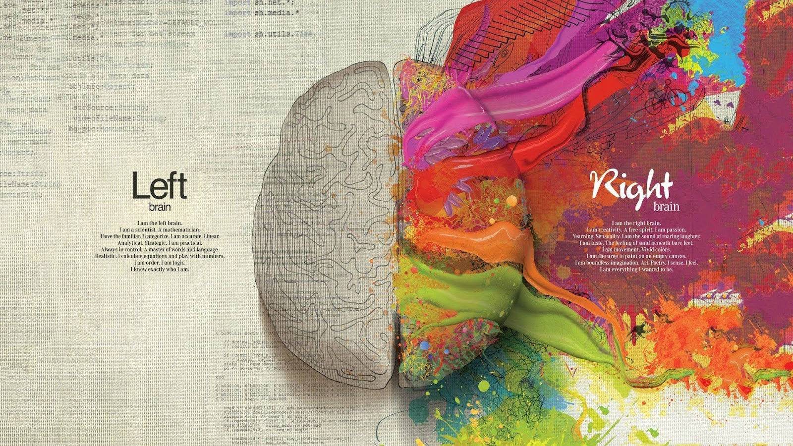 Left Brain versus Right Brain Creativity