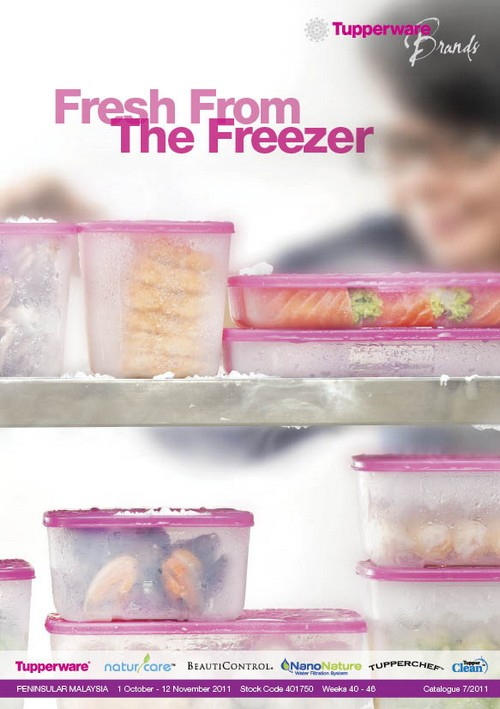 Tupperware Catalog-Splash designs for Chinese New Year-Limited !