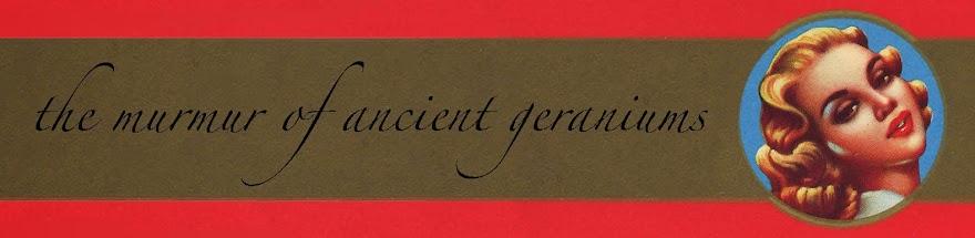 the murmur of ancient geraniums