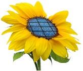 Imágen representativa de fuentes de energía renovable limpia.