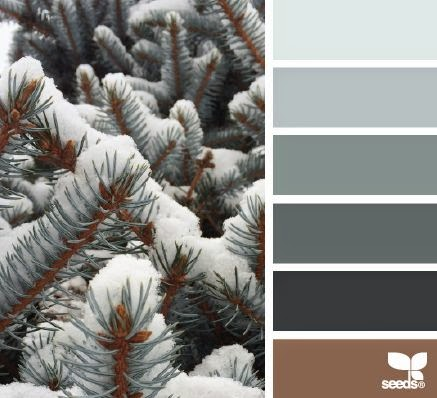 Snowy Tones: Design Seeds