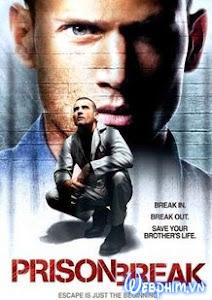 Xem Phim Vượt Ngục Phần 1 - Prison Break Season 1