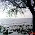 Pantai di Sabak Bernam