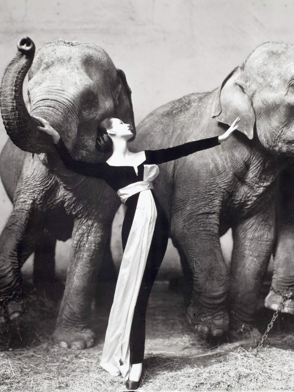 "Dovima with Elephans"" editorial photographed by Richard Avedon. Dovima in Yves Saint Laurent design for Christian Dior"