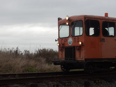 photo of orange speeder on oregon coast by Nancy Zavada