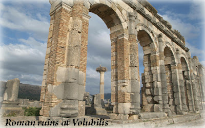 Morocco-Roman ruins at Volubilis