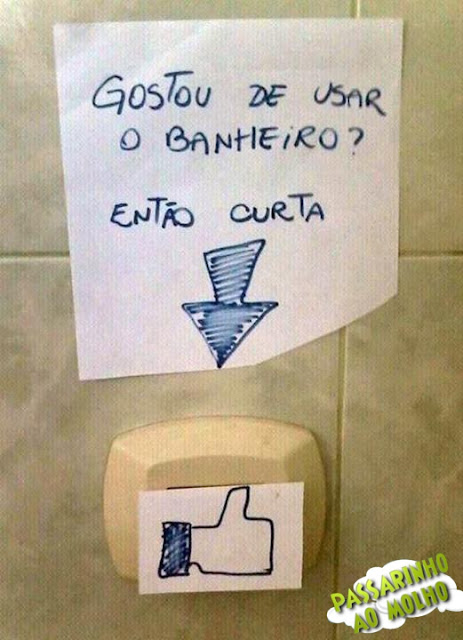 curtir descarga, vaso sanitário