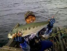 Mantap Strike Ikan Talang Talang
