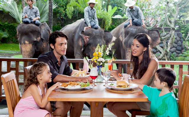 Bali Zoo Park Breakfast With Elephant - Singapadu, Sukawati, Gianyar, Bali, Holidays, excursion, Attractions, Bali Zoo Park, Packages